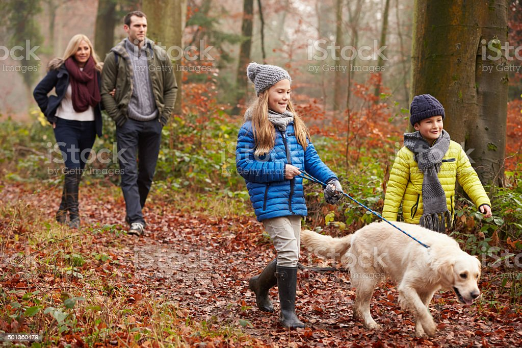 Family Walking Dog Through Winter Woodland stock photo