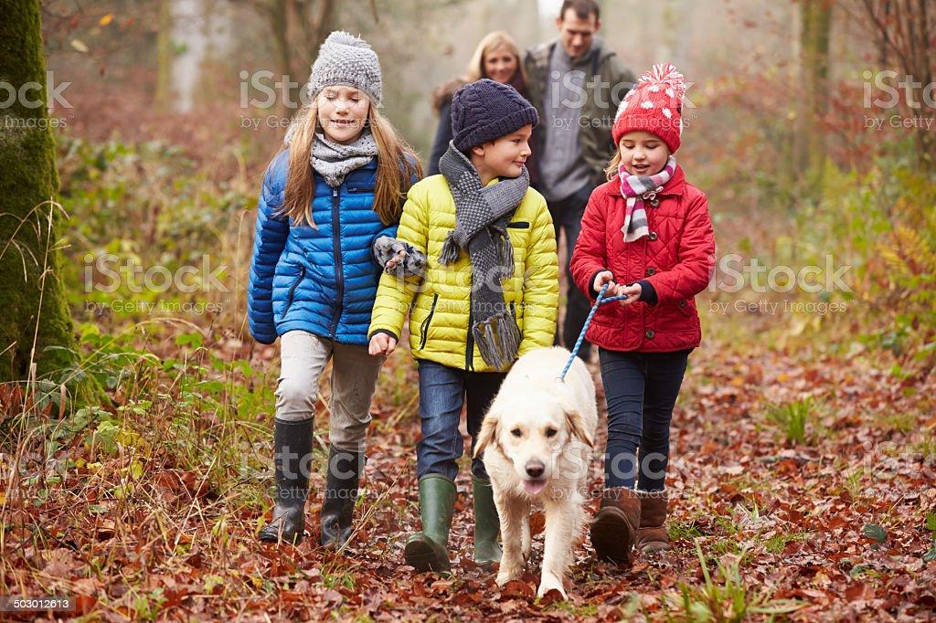 Family Walking Dog Through Winter Woodland royalty-free stock photo