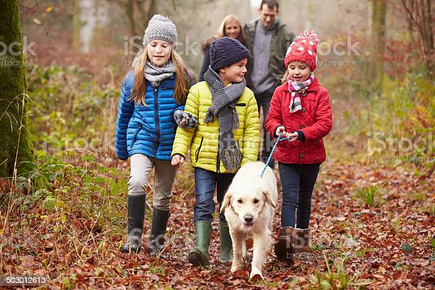 Family walking dog through winter woodland picture id503012613?b=1&k=6&m=503012613&s=612x612&h=nadtiic1gupba 7u6qavrg8s61v5 gh2rgorz0cv7c0=