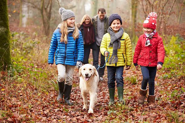 Family walking dog through winter woodland picture id506602689?b=1&k=6&m=506602689&s=612x612&w=0&h=px5zgzveaomhyi20c8to6bpqkvtyauocl6rhhtkqrlk=