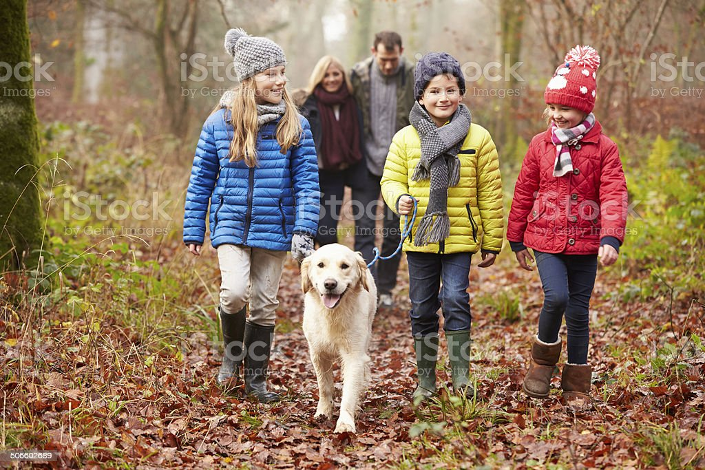 Family Walking Dog Through Winter Woodland stock photo