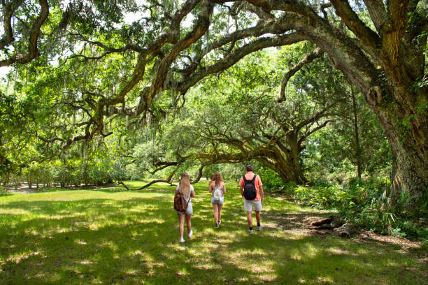 Family walking in beautiful park on summer vacation trip. stock photo