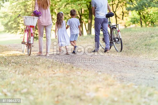 658444674istockphoto Family walking in distance 811964372