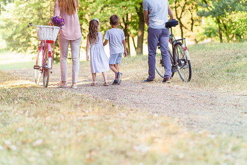 658444674 istock photo Family walking in distance 811964372