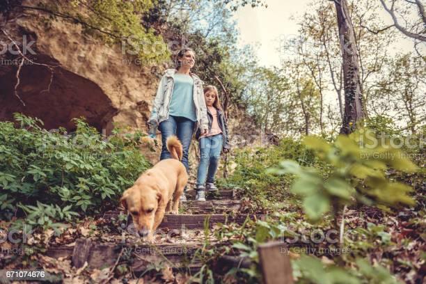 Family walking in forest with a dog picture id671074676?b=1&k=6&m=671074676&s=612x612&h=lt0lsdqitifu4eoq2iga6bcdm1voz eskajk31pzd6c=