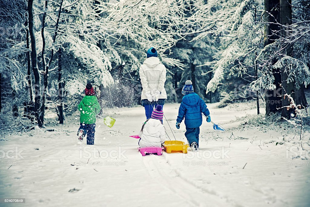 Family walking into the winter forest stock photo