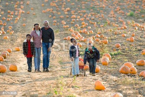 81711567 istock photo A family walking through a field of pumpkins 81710605