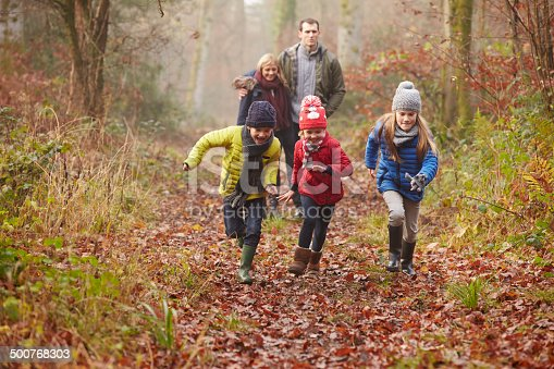 istock Family Walking Through Winter Woodland 500768303