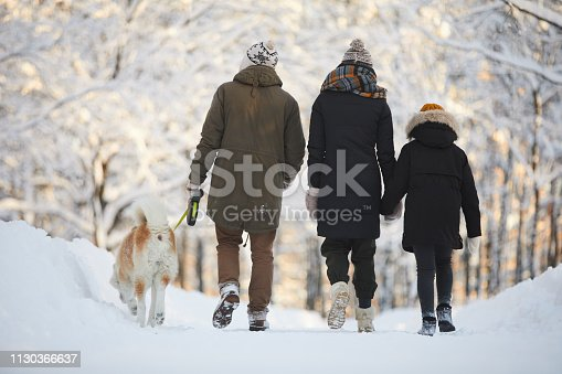 Back view portrait of happy family posing with dog in beautiful winter forest, copy space