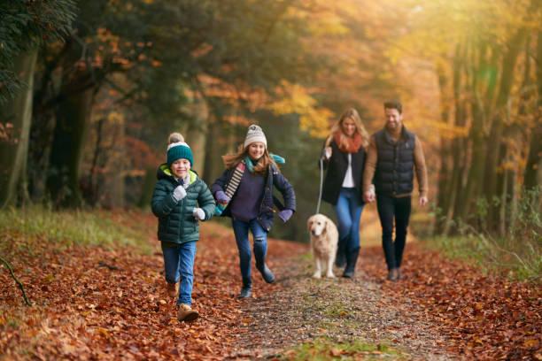 Family walking with pet golden retriever dog along autumn woodland picture id1256257091?b=1&k=6&m=1256257091&s=612x612&w=0&h=ani5b1fefyypzv8z9tr4d6bq8dms22e2akeqz5ddbvs=