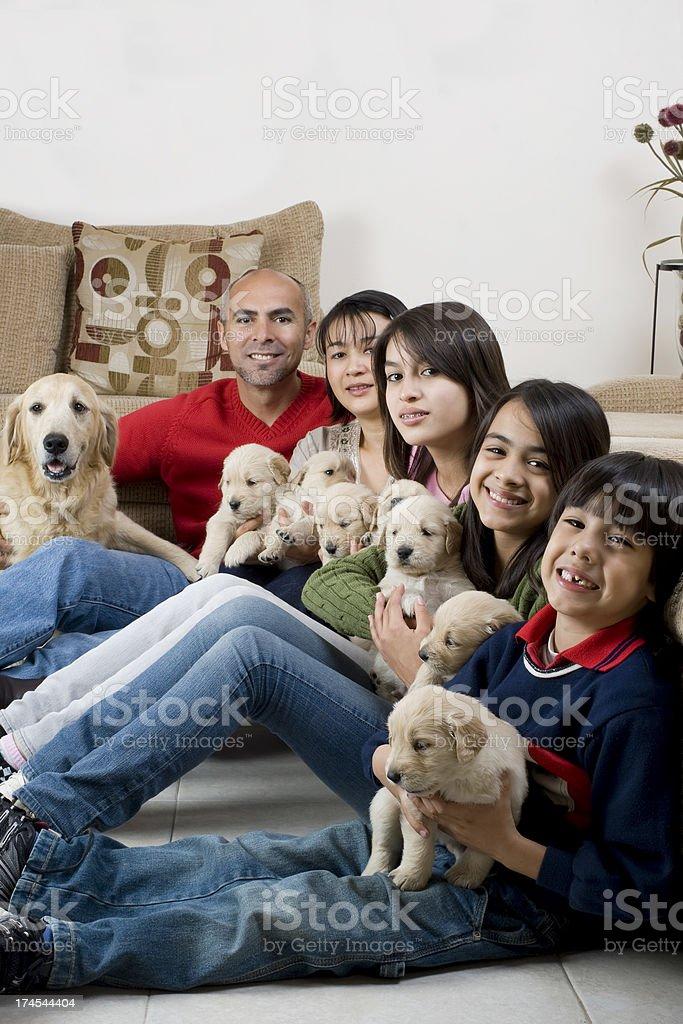 Family whit their dogs stock photo