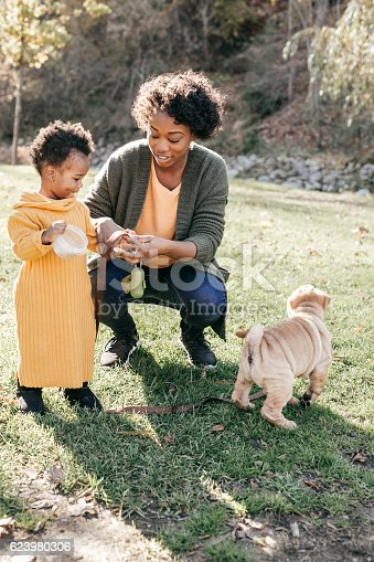 628820352 istock photo Family with a dog 623980306