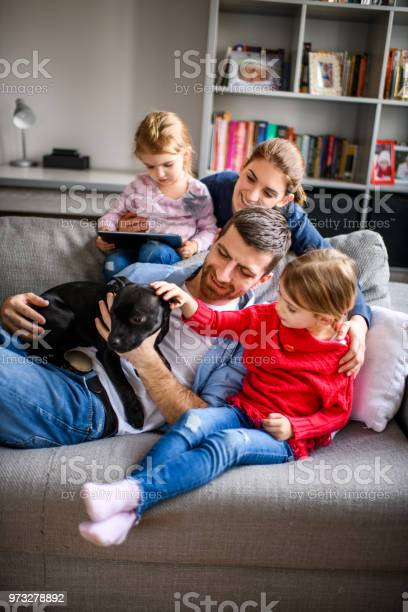 Family with children and a dog picture id973278892?b=1&k=6&m=973278892&s=612x612&h=s75dxmqypcbjcoqpdmr7m0gdng6cd0f6w21jvvhn5iq=