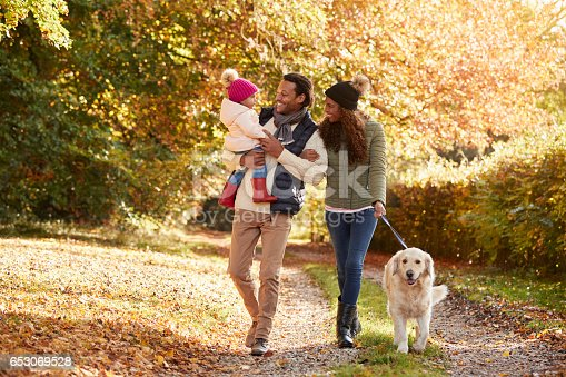 istock Family With Daughter And Dog Enjoy Autumn Countryside Walk 653069528