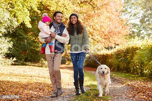 628820352 istock photo Family With Daughter And Dog Enjoy Autumn Countryside Walk 653070752