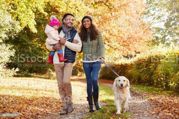 Family with daughter and dog enjoy autumn countryside walk picture id653070752?b=1&k=6&m=653070752&s=612x612&h=f8wqqt3 ld5yskhempfxjeuojtolvqco kf9kvget58=