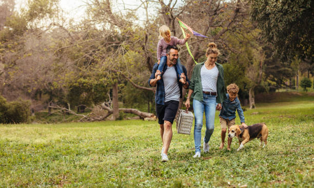 family with dog going on picnic in park - canide foto e immagini stock