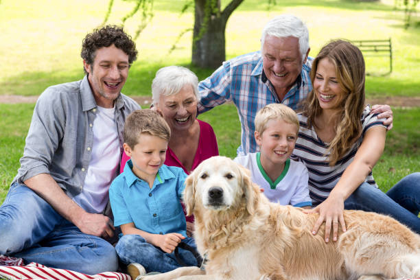 Family with dog in the park picture id700190060?b=1&k=6&m=700190060&s=612x612&w=0&h=irgm1sqhjhq5an8myapwxxs dx7a9nemix9iz8fcky4=