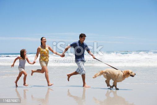 istock Family with dog running on beach 116376921