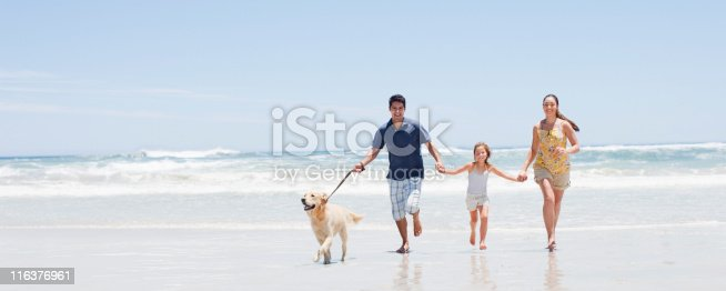 istock Family with dog running on beach 116376961