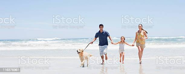 Family with dog running on beach picture id116376961?b=1&k=6&m=116376961&s=612x612&h=glqbepsse3hc8wpludbg9y55btxxmgzb3w44vvi4p m=