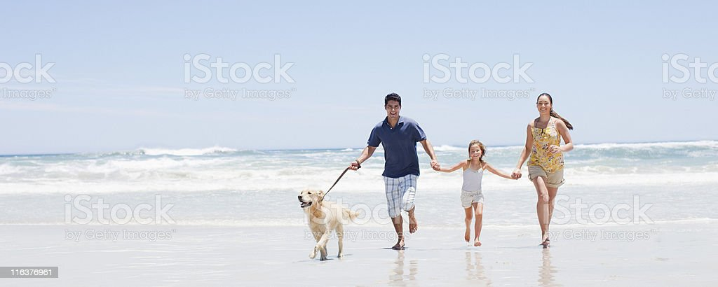 Family with dog running on beach stock photo