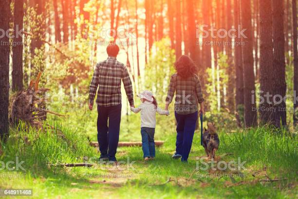 Family with dog walking in the forest back to camera picture id648911468?b=1&k=6&m=648911468&s=612x612&h=tcvrpad jqvfdtw1m6eqhrgtobgqzjmj8jetvn47 ws=