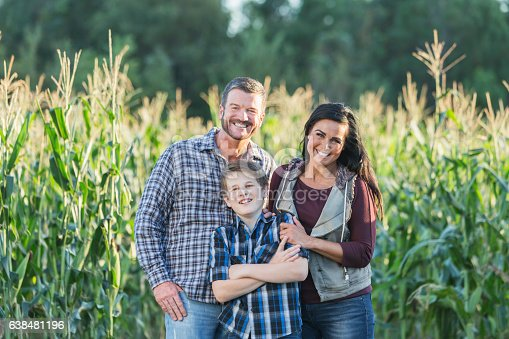 istock Family with teenage son on a farm by corn field 638481196