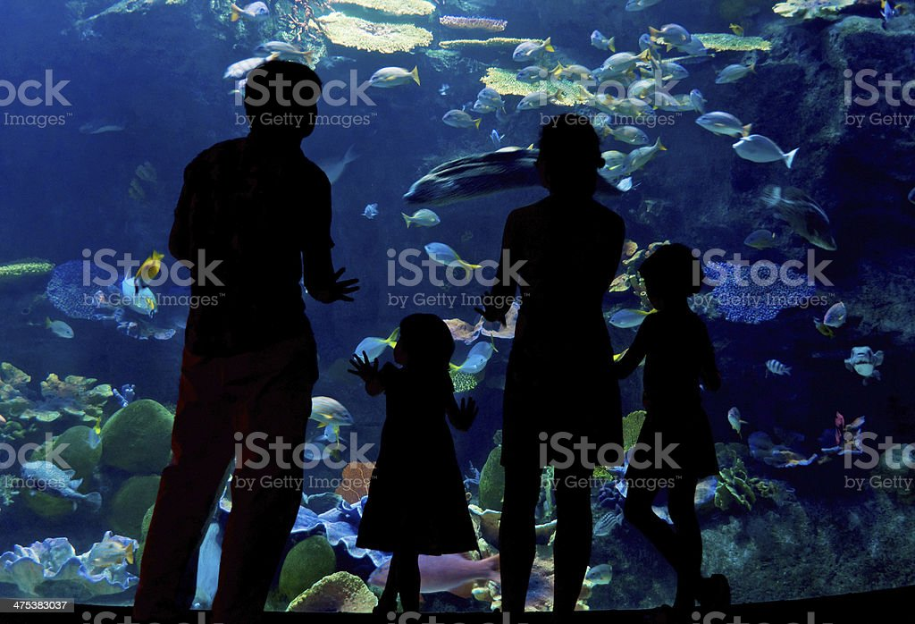 Family with two kids in oceanarium stock photo
