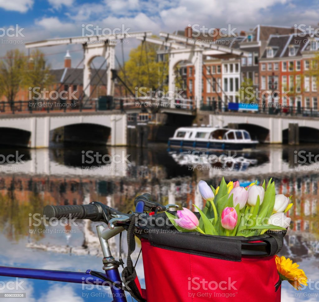 Famous Amsterdam with basket of colorful tulips against canal in Holland royalty-free stock photo