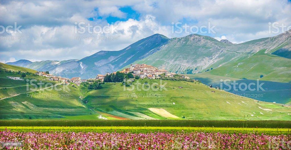 Famoso Castelluccio di Norcia con un hermoso paisaje de verano, Umbria, Italia - foto de stock