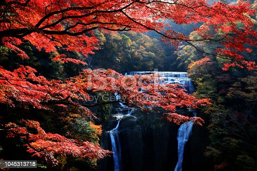 Fukuroda waterfalls, one of the Three Great Waterfalls in Japan (alongside Kegon Falls in Nikko and Nachi Falls in Kumano), during colorful autumn in Ibaraki, Japan