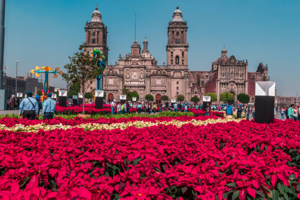 Famous Mexican cathedral surrounded by poinsettias stock photo