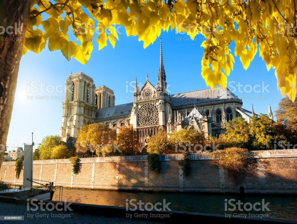 Famous Notre Dame in autumn stock photo