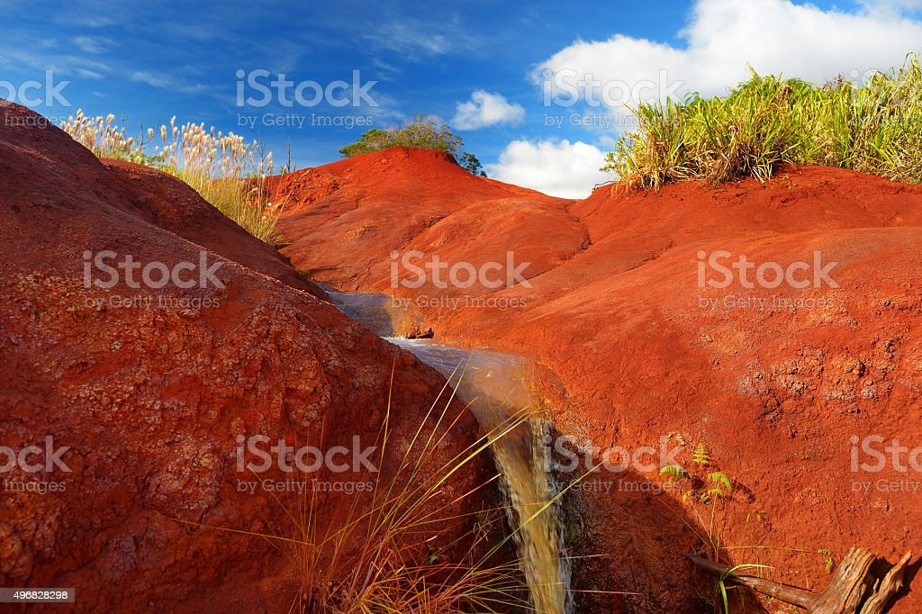 Famous red dirt of Waimea Canyon in Kauai stock photo
