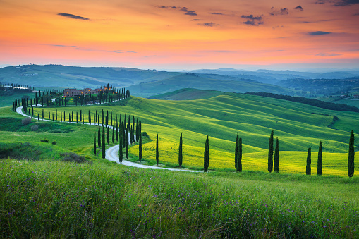 Magical colorful sunset in Tuscany. Picturesque agrotourism and typical curved road with cypress, Crete Senesi rural landscape in Tuscany, Italy, Europe