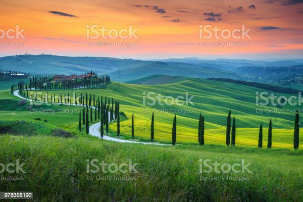 Famous tuscany landscape with curved road and cypress italy europe picture id978368192?b=1&k=6&m=978368192&s=612x612&h=prtcuty2 8wgppv3bigomt13c7taynugfoesgq976 e=