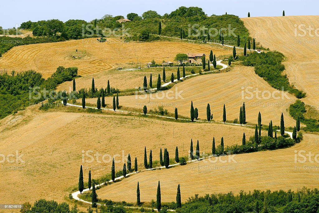 Famous winding road with cypresses in Tuscany royalty-free stock photo