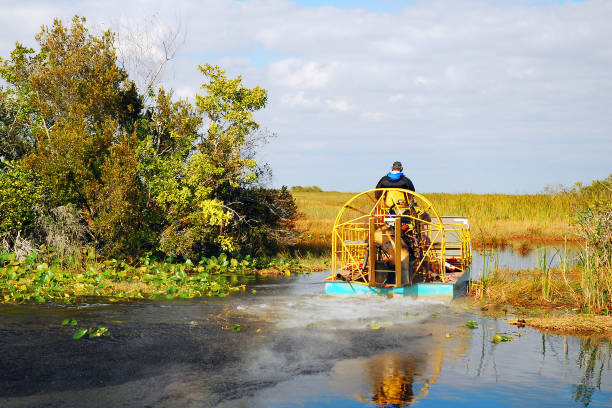 A Fan Boat Departs to Tour the Florida Everglades stock photo