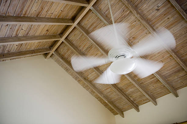 "Fan ""Ceiling fan, movement in blades"" ceiling fan stock pictures, royalty-free photos & images"