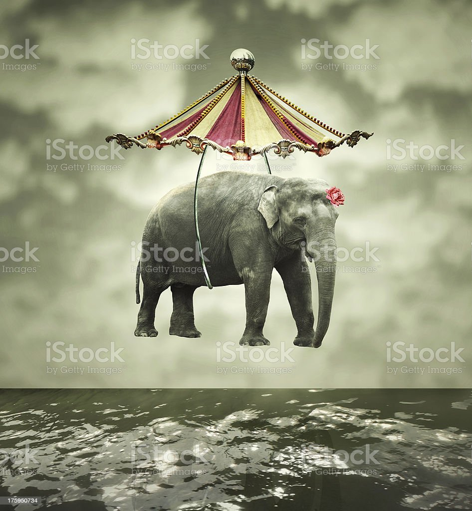 Fanciful elephant stock photo