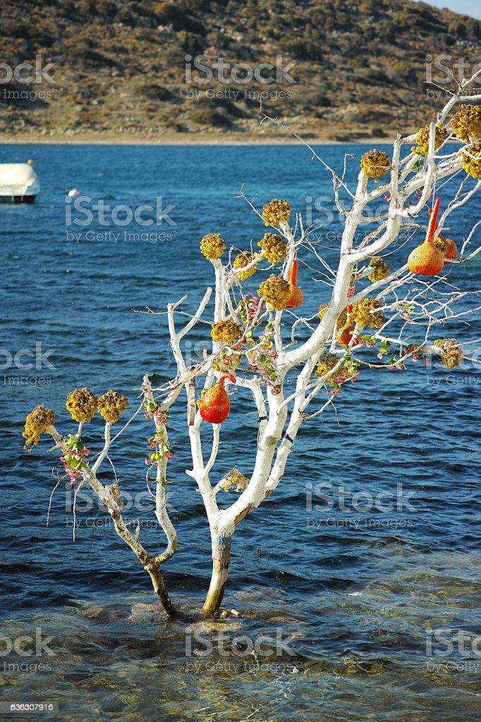 Fancy Tree Inside Of The Sea stock photo