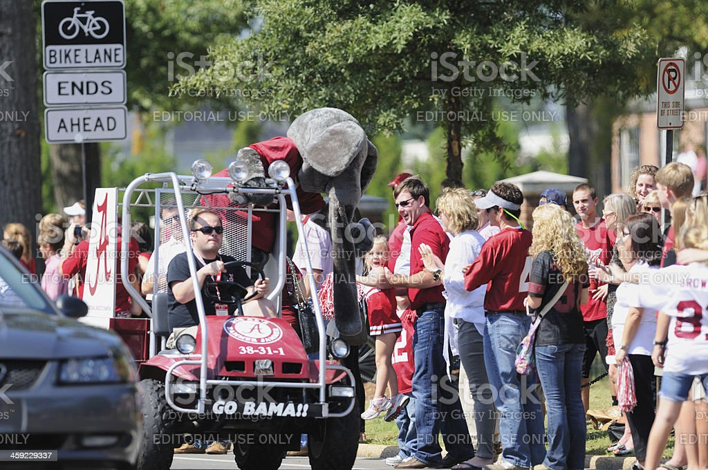Fans and Big Al in University of Alabama homecoming parade stock photo
