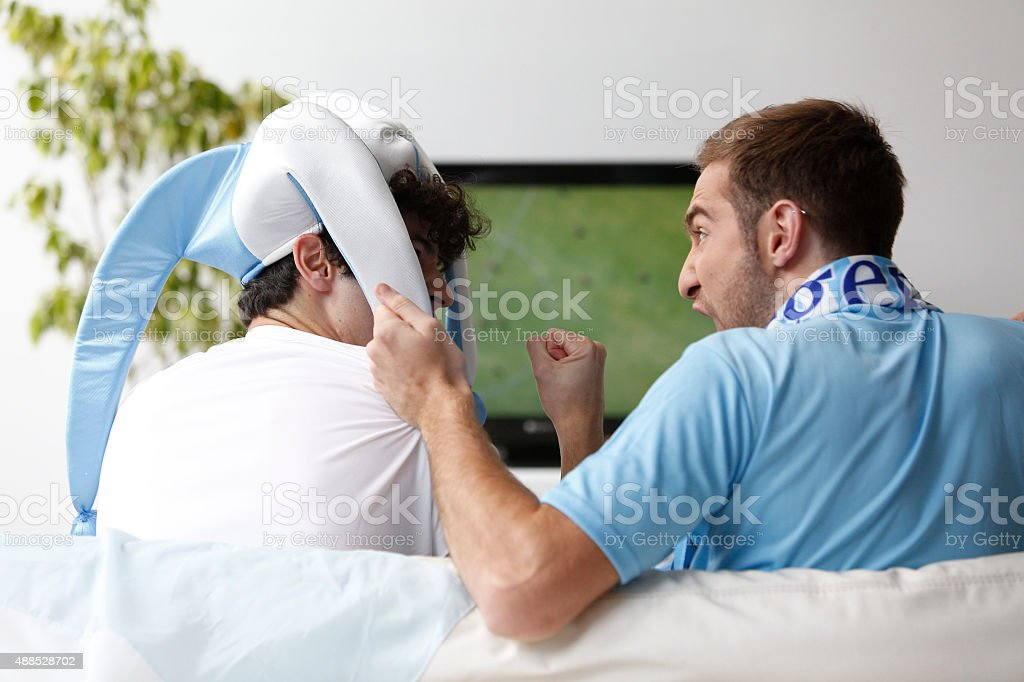 Fans of Argentina Celebrate stock photo