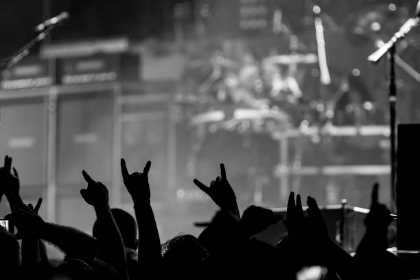 Fans rock out stock photo