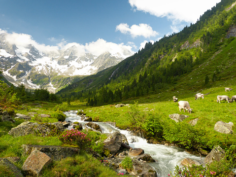 fantastic alpine mountain scene
