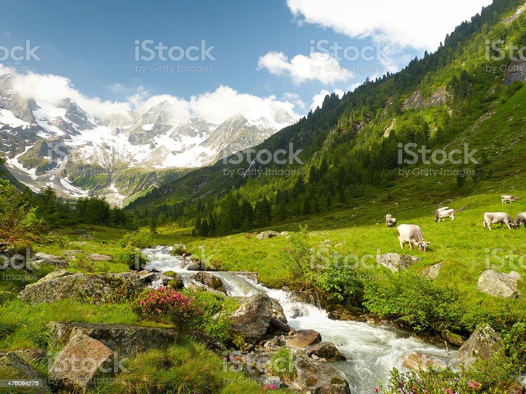 fantastic alpine mountain scene stock photo