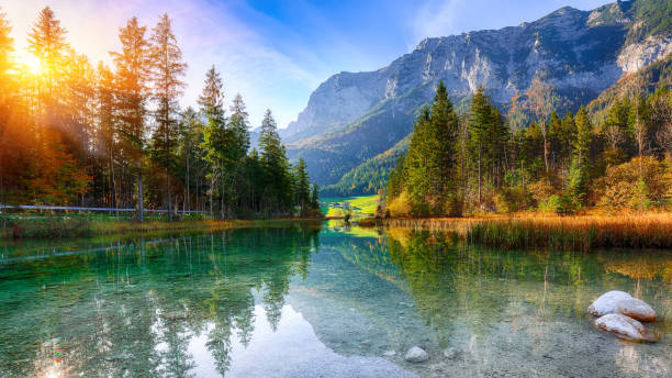 Fantastic autumn sunset of Hintersee lake Fantastic autumn sunset of Hintersee lake. Beautiful scene of trees near turquoise water of Hintersee lake. Location: resort Ramsau, National park Berchtesgadener Land, Upper Bavaria, Germany Alps, Europe lake stock pictures, royalty-free photos & images