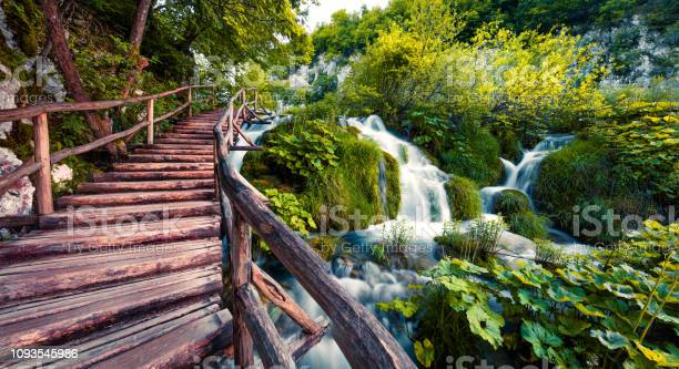 Fantastic morning view of plitvice national park colorful spring of picture id1093545986?b=1&k=6&m=1093545986&s=612x612&h=hzyyoiz1mwgsdovbjlq1oggrw2wztwg3yy nbo8ub2c=