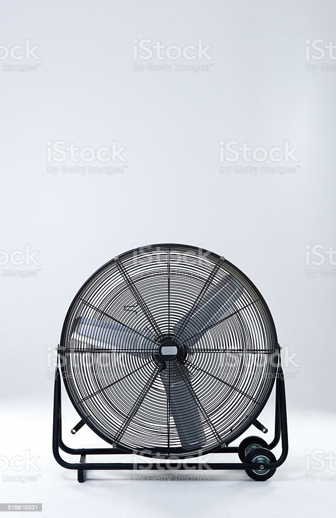 Fan-tastic! stock photo